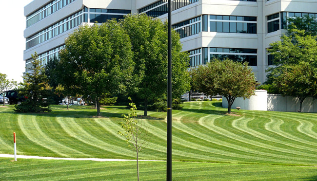 Commercial Lawn Mowing Service Southlake Texas